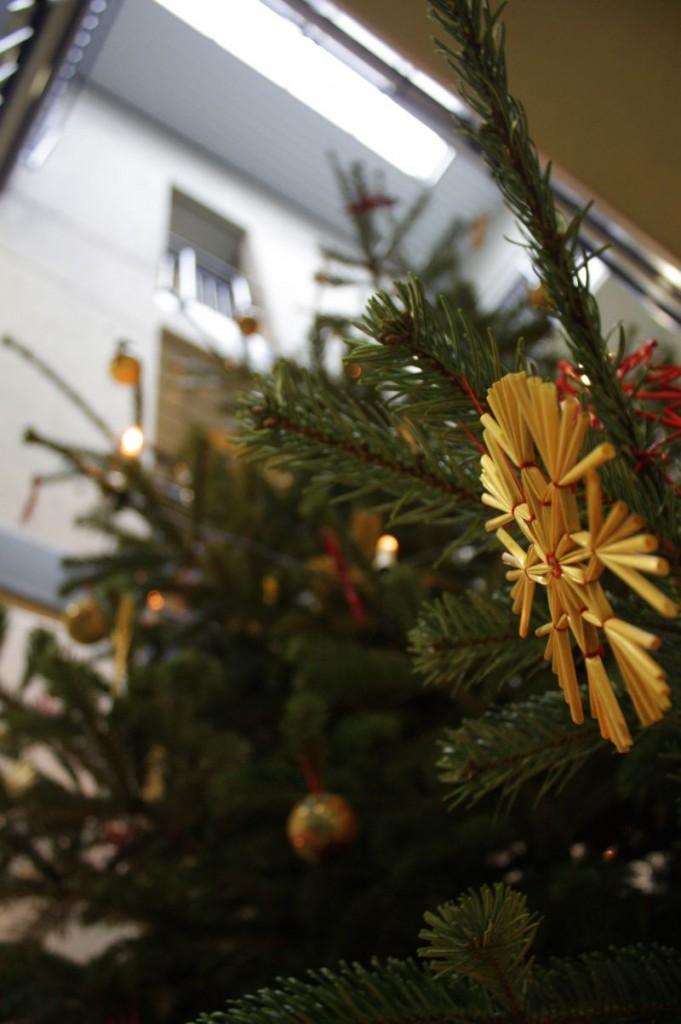 Alljährlich stellt der Förderverein im Treppenhaus einen Weihnachtsbaum auf. Schüler und Lehrer sagen: Danke!