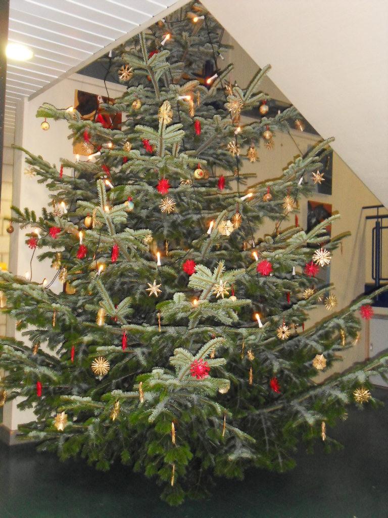 Das Aufstellen des XXL-Weihnachtsbaums verdanken wir dem Hausmeister-Team, den Schmuck dem Förderverein unserer Schule.