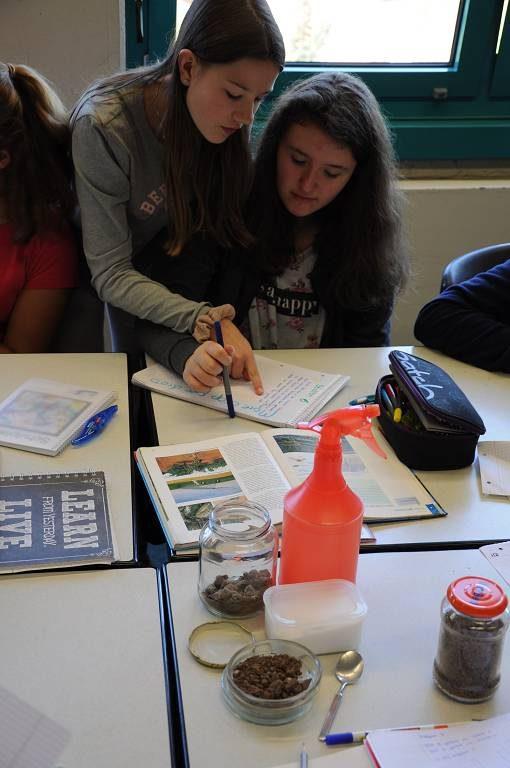 An den Tischen mit den verschiedenen Aufgaben treffen sich beim Stationenlernen immer wieder neue Gruppen von Schülerinnen und Schülern, die einander unterstützen können.