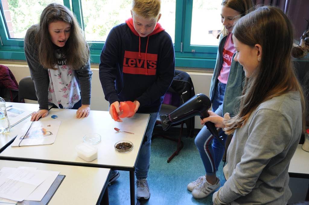 Ein zweites Experiment lässt die Schülerinnen und Schüler erkennen, wie Bodenversalzung entsteht.